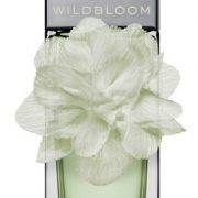 Banana Republic Wildbloom Vert купить духи