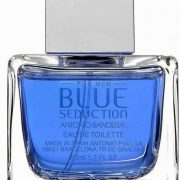 Banderas Blue Seduction for men купить духи