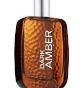 Bath & Body Works Dark Amber купить духи