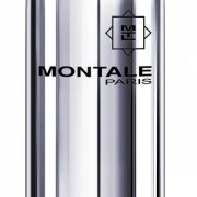 Montale Patchouli Leaves купить духи